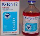 Tornel K Ton 12 - 100 ml | Energy Enhancer