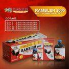 Rambler 5000 | Vitamin B Complex