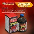 Xpander | Vitamin B Complex + Amino Acids